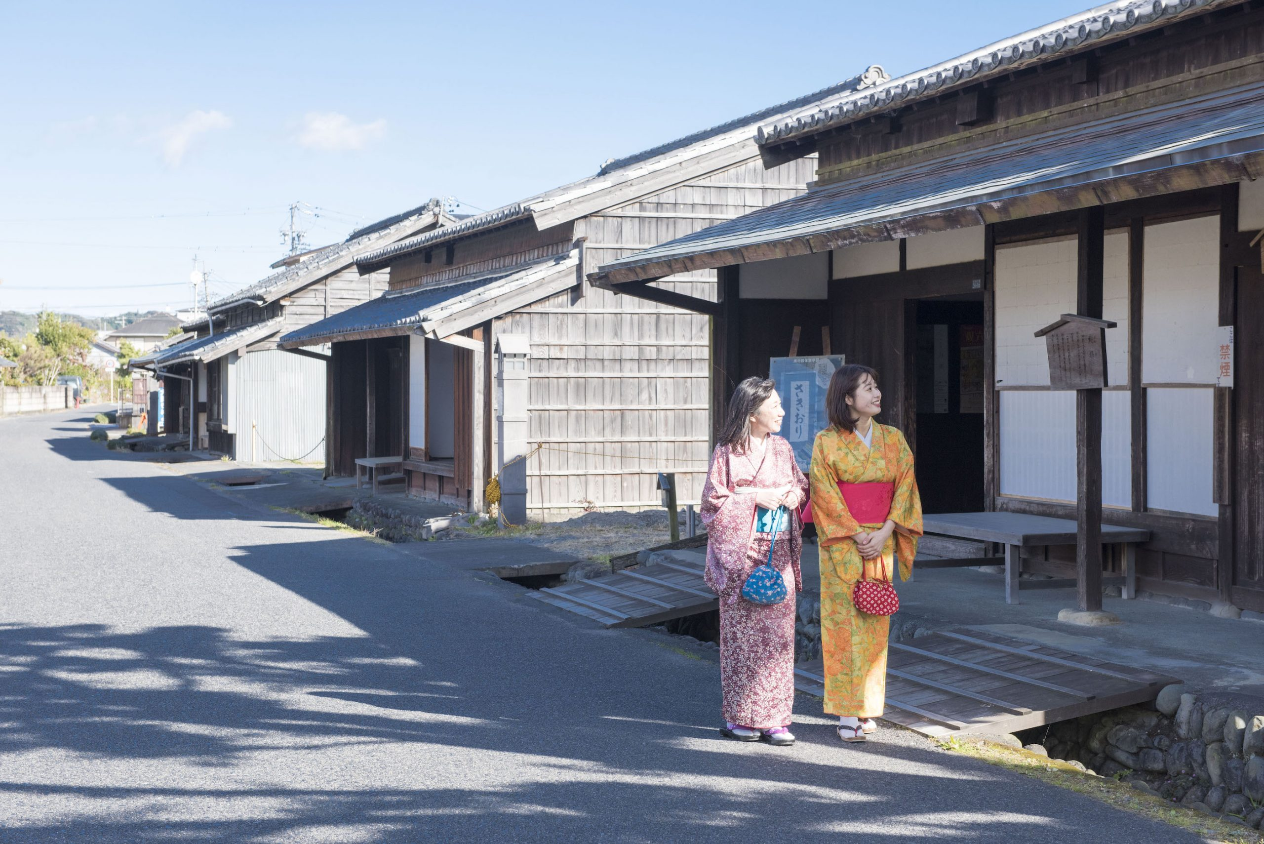 Experience the real pleasures of Shimada! A two-day, one-night trip to experience Shimada tea(part I)
